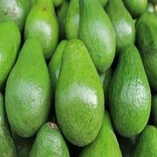 The Benefits of Avocados